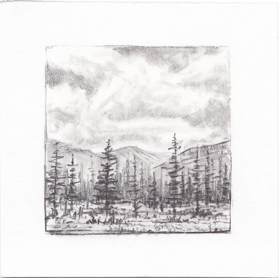 #16 Yosemite National Park, California | 3x3 | graphite