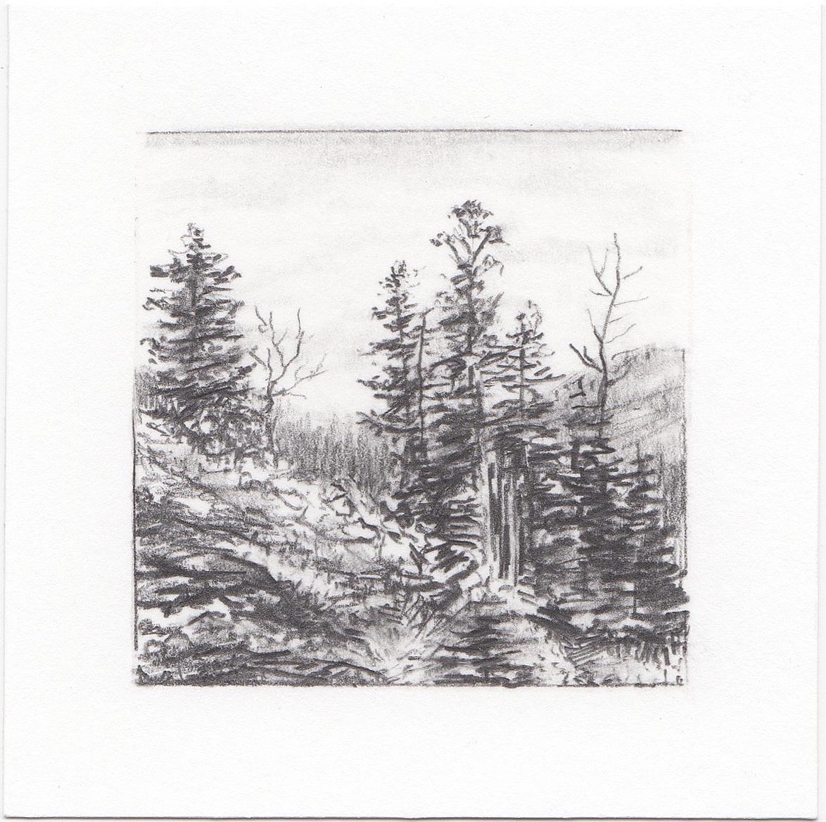 #17 Mill D South Fork, Big Cottonwood Canyon, Utah | 3x3 | graphite