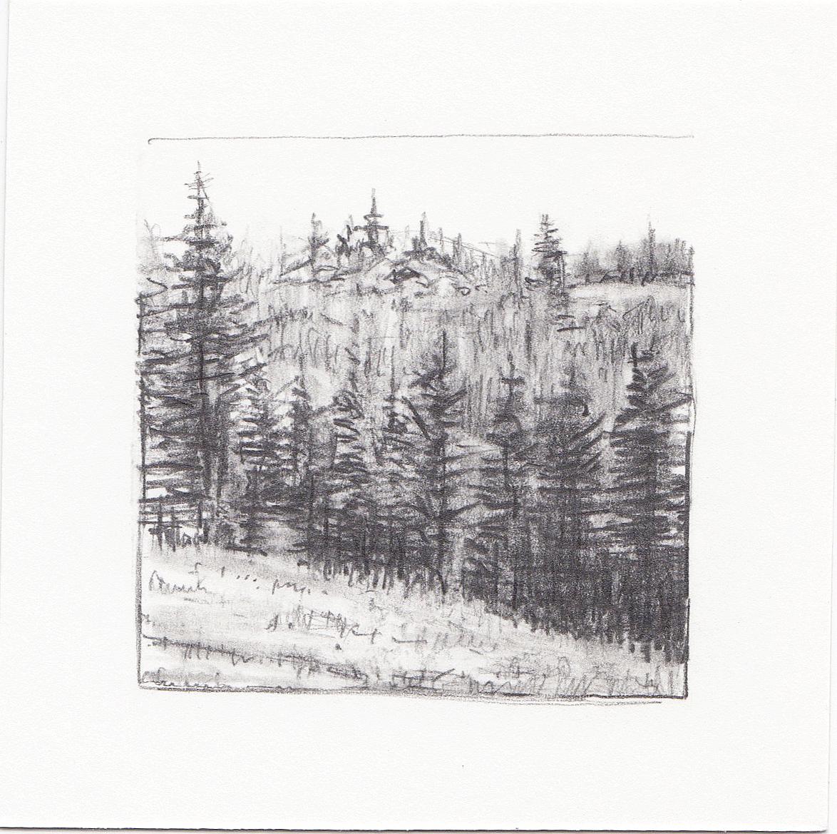 #40 Desolation Lake Trail, Wasatch Mountains, Utah | 3x3 | graphite