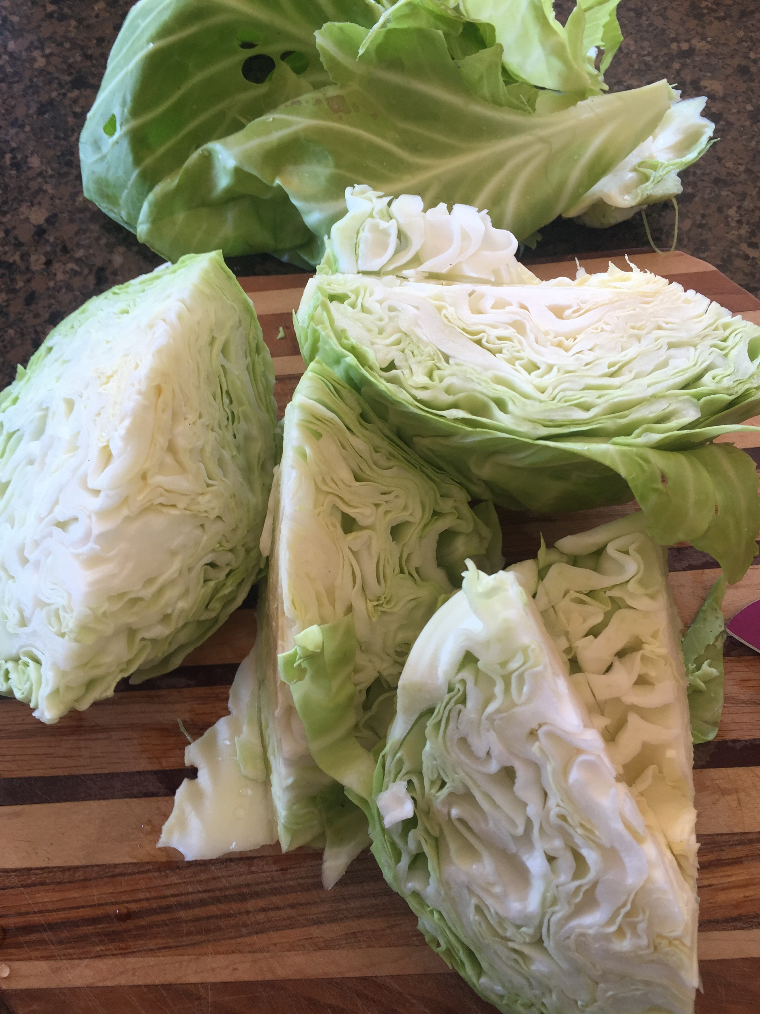 Here is one cabbage cored and cut into fourths---all ready for shredding/slicing.  You can see the outer leaves at the top of the picture!