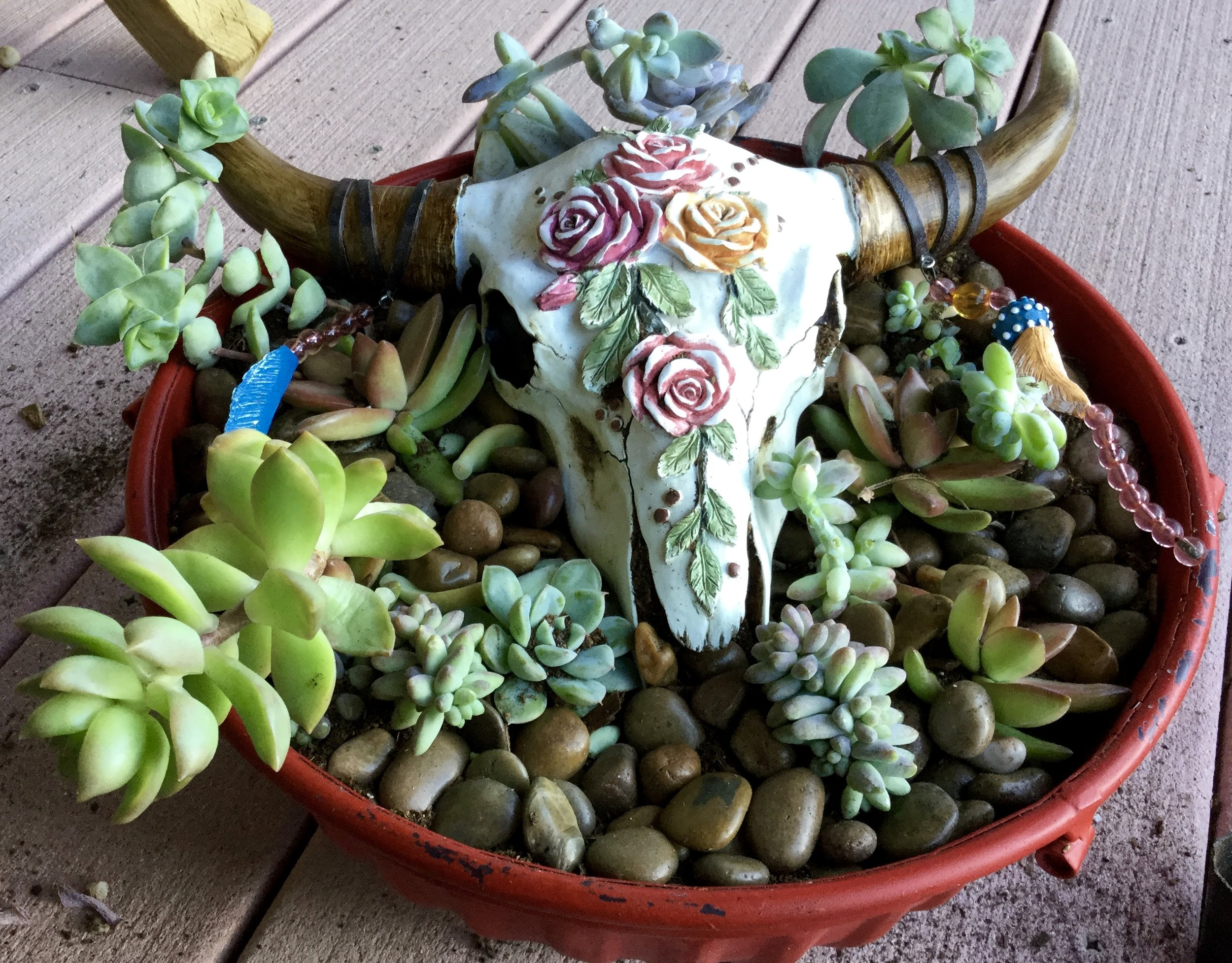 The (almost) finished bowl. I'm going to add one more succulent plug to the front, there.