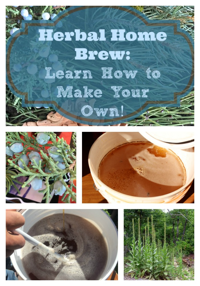 Have you been wanting to make your own beer or ale? This home brew recipe using herbs from your own area is one way to incorporate health into your life. It's perfect for the survivalist or the preparedness fan to try, too, as you can make this beer without the fancy ingredients called for in most artisan beer recipes. #homebrew #howtomake #homemadebeer #ale #beer #herbalbeer #artisanbeer #beerrecipe #naturalbeer #prepper #survival #survivalbeer #oldways #healingharvesthomestead