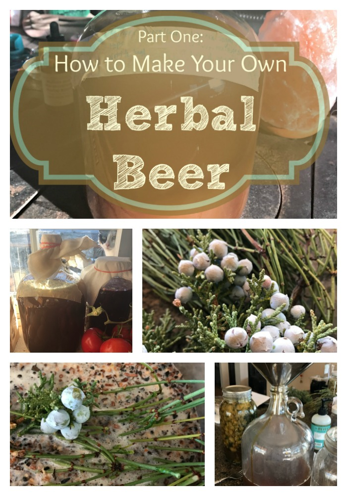 Have you ever wanted clear directions for making your own home brew? And would you like to add herbs for healing or for taste? In Part One of this How to Make Your Own Herbal Home Brew series, you will be guided through all the steps up to the second ferment so you can get started making your own beer using herbs! #diy #beer #ale #homebrew #herbal #howtomake #howto #ferment #healingharvesthomestead