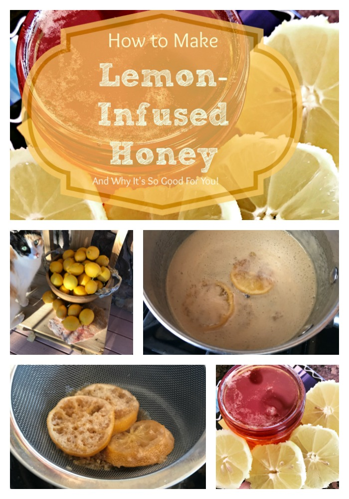You've probably heard about drinking a cup of water with lemon and honey every day for health! Well, here is how to infuse your honey with lemon---you can put this into your water, sprinkle it on toast, use it to sweeten herbal tea...and get even more of the lemony-honey goodness!