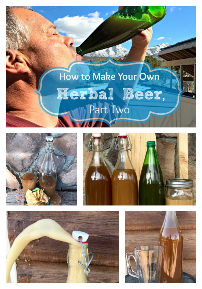 Here's Part Two of my series on how to make herbal beer (ale) at home! You'll definitely want to check out these pictures--this beer turned out GREAT! For part one, visit  this article.