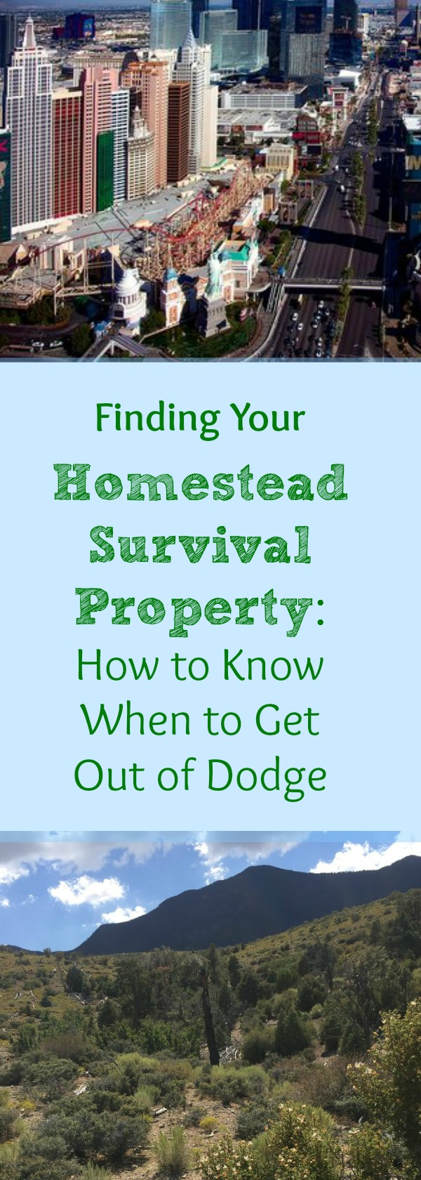 Our Search for a Forever Homestead & Survival Property: Our
