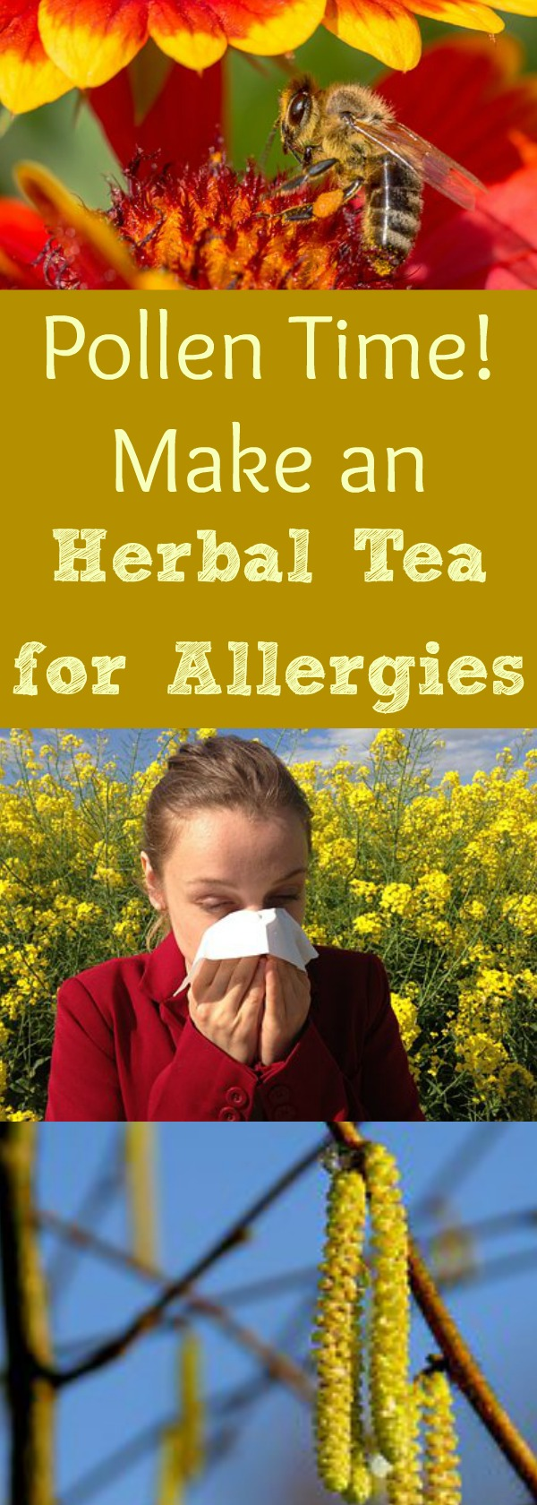 It's officially allergy season, and the pollen is rockin' & rollin' out there-- causing sinus inflammation and stuffy runny noses everywhere! Here's an herbal tea you can make for your family that will soothe and calm those allergies! #allergytea #teaforallergy #decongestant #getridof #sniffles #healingharvesthomestead