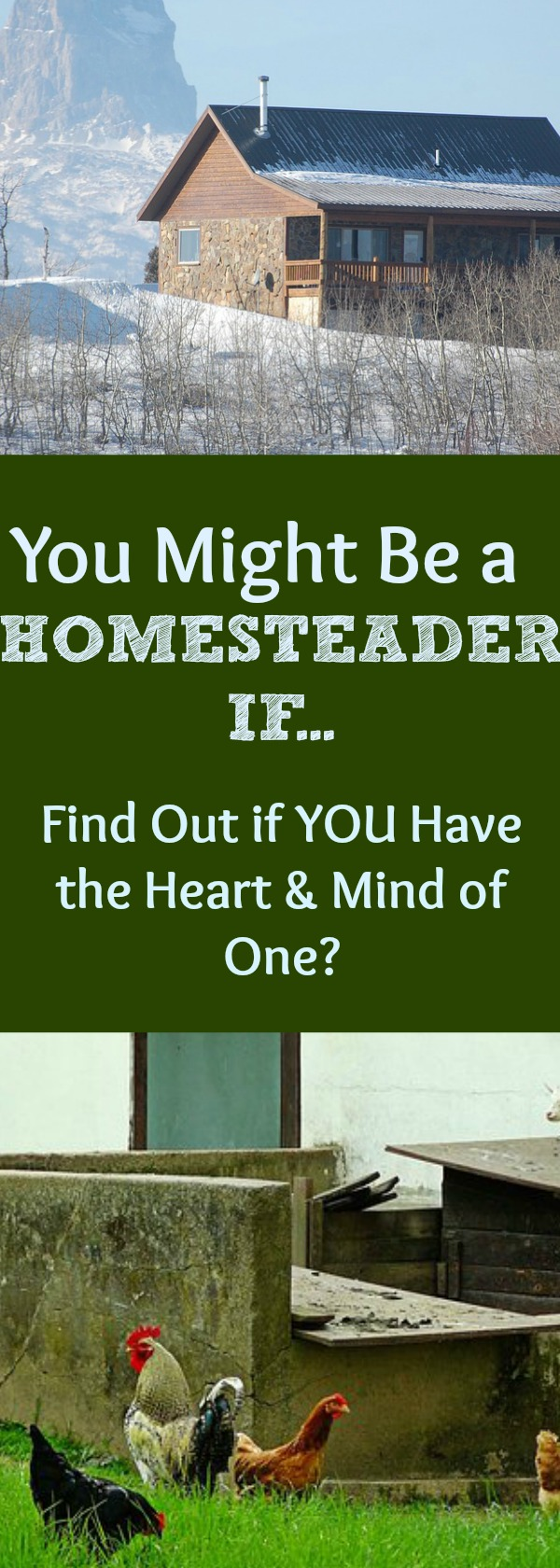 Are YOU a homesteader? Doesn't matter where you live! A homesteader is a person with a special mind and heart. See if you have what it takes to be a homesteader and if YOU think like a homesteader!