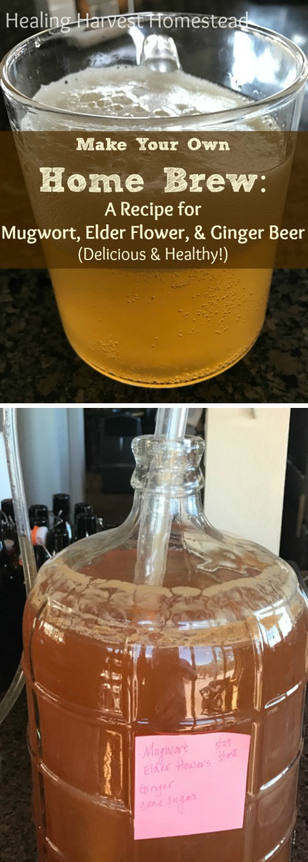 Learn the step-by-steps to making your own Herbal Beer! It's easy, creative, and healthy! I think everyone should be making their own beer and ale! :-) SO much better than the commercial versions. This recipe is for Mugwort, Elder Flower, and Ginger Beer---It is seriously delicious and refreshing!