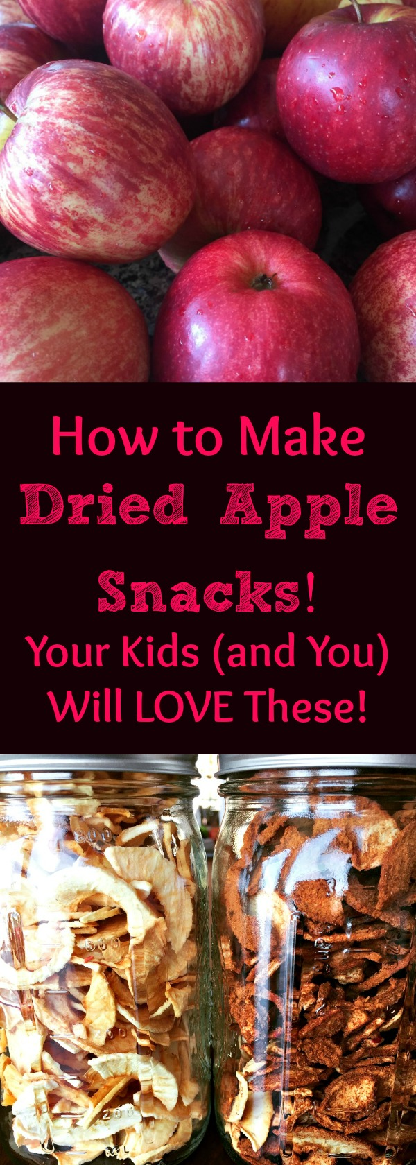 Dried apples are the BEST snacks for kids! Find out how to make dehydrated apples and cinnamon apples! Here's a quick, easy recipe and method for dehydrated apples, and you don't even need a dehydrator!