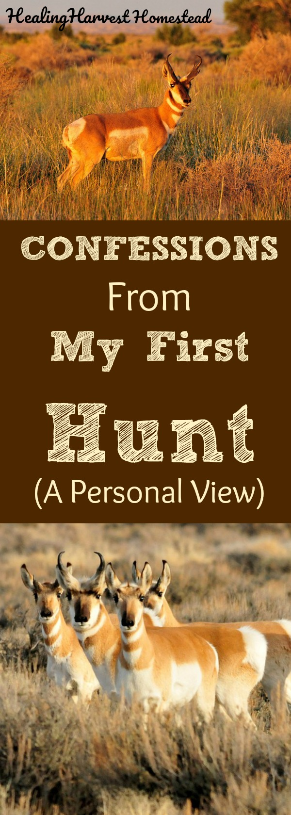 Here's what a first hunt is like. Confessions about hunting for the first time. Antelope hunting. How does a person feel after killing an animal? How does a person feel after taking a life? Is it ever ok? Here are my thoughts on the matter.