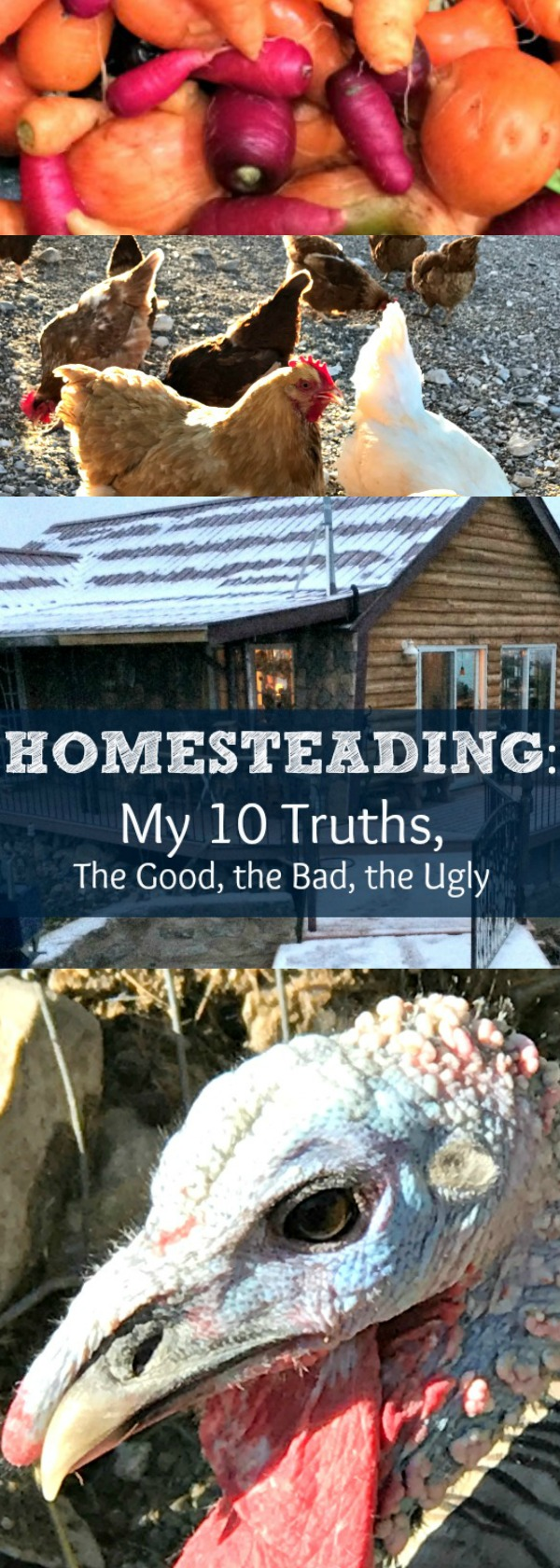 Homesteading is hard to define. It means different things to different folks. Here is my definition of homesteading. What is homesteading? How do you do it? Where can you homestead? Find out my truths about the homesteading life!