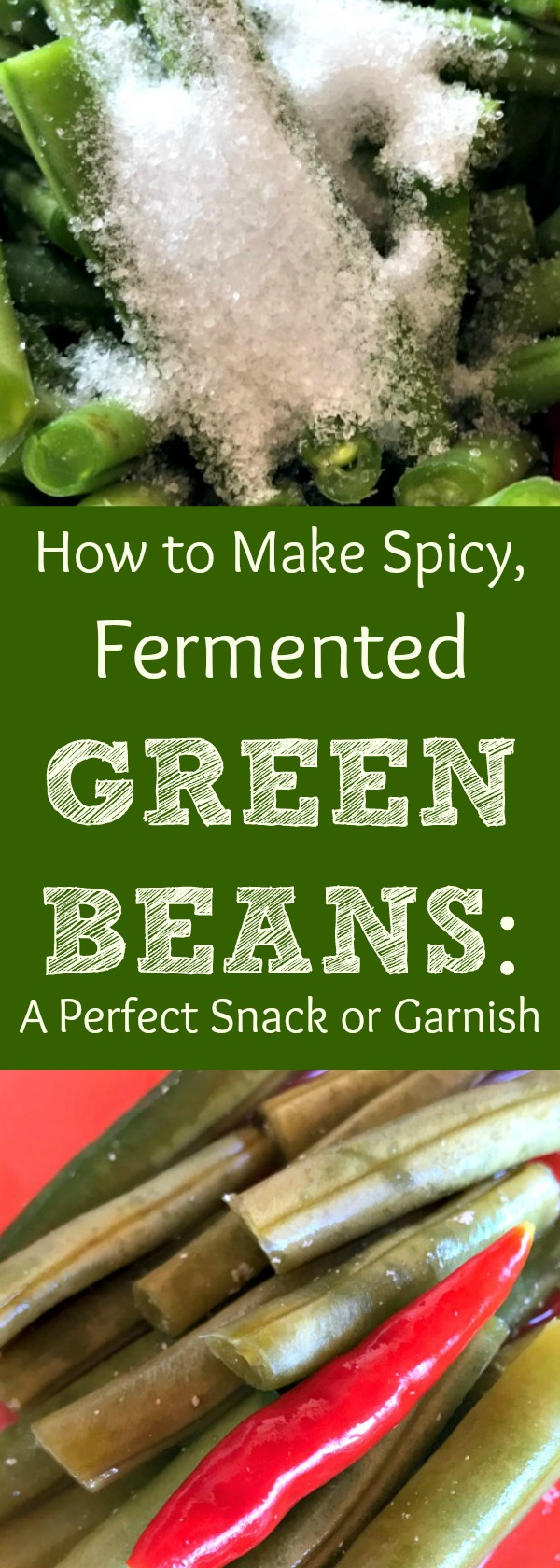 Have too many green beans to use up? Need to use them fast? Don't feel like canning? Here's my recipe for Spicy Fermented Green Beans! Fermentation is a great option as a food preservation method. Here's how to ferment green beans for a delicious snack or addition to your cooking!