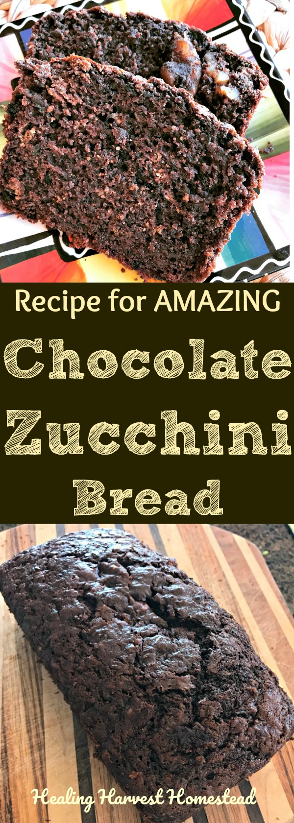 Got too much zucchini? Make zucchini bread! Here's a recipe for my chocolate zucchini bread that is AMAZING! It's also easy. Delicious, healthy recipe for chocolate zucchini bread!