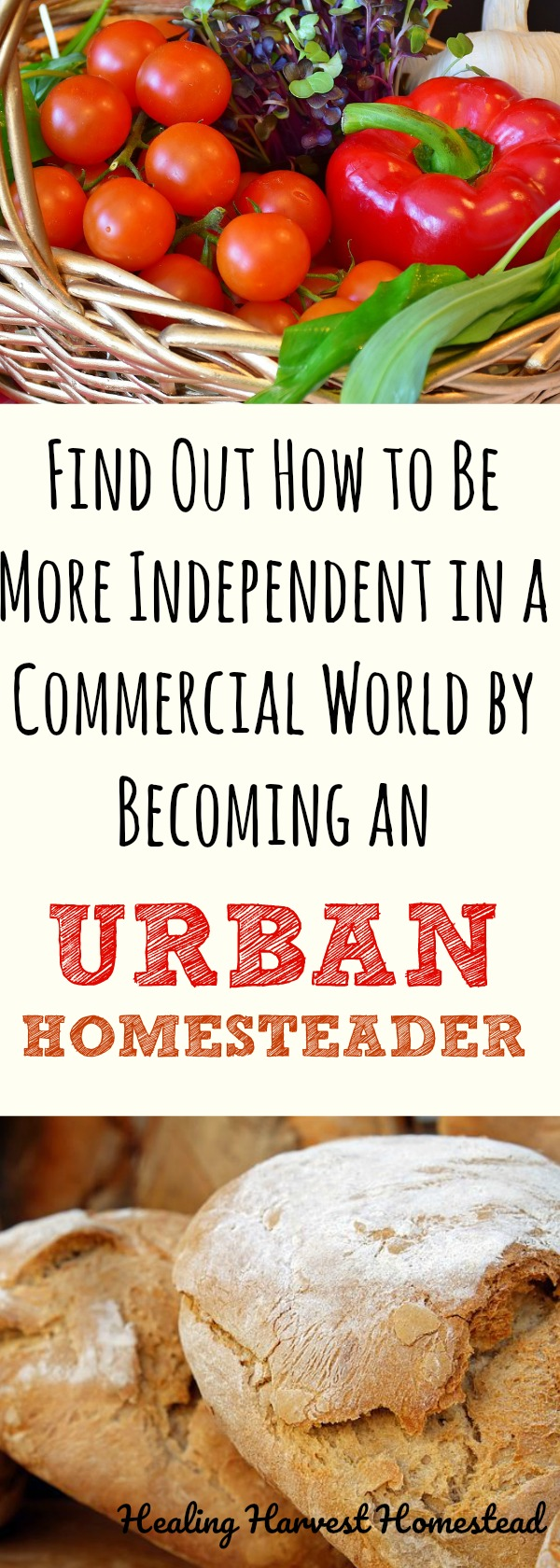 What on earth is Urban Homesteading? Is it even a thing? Find out what urban homesteading is, how to become an urban homesteader, and how to live a more self-reliant life no matter where you live. Can you be self-sufficient in the big city? Yes! Find out how to become more independent and inter-dependent! #urban #homesteader #howtohomestead #howtostart #homesteading #healingharvesthomestead