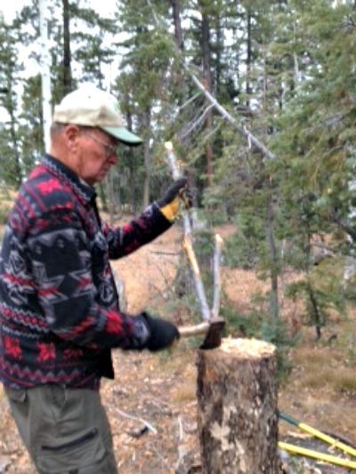 Shaving off the bark carefully---