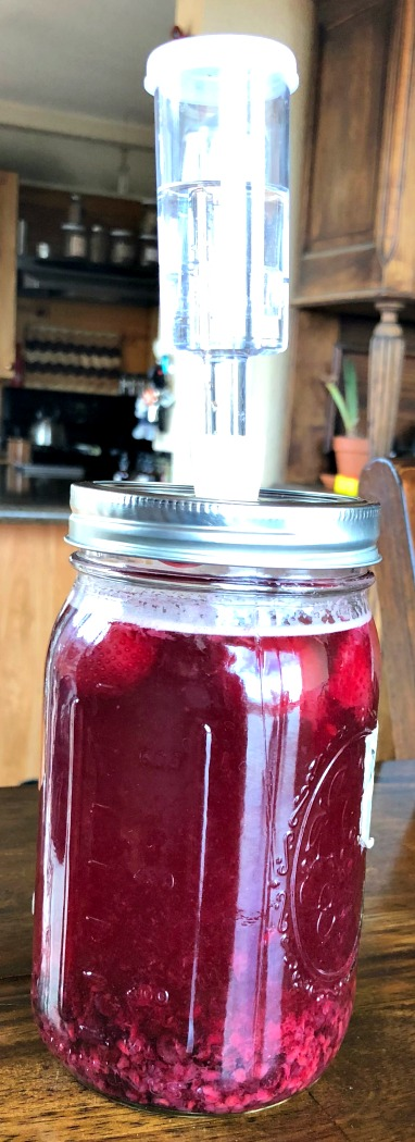 Here is how the berry soda looks right after getting it all set up. Usually, you do not want floating fruits or veggies in your ferment, but I knew this wasn't going to take too many days, so I decided not to be concerned this time. The white froth on top is from stirring it to mix in the honey. It hasn't actually started fermenting yet.
