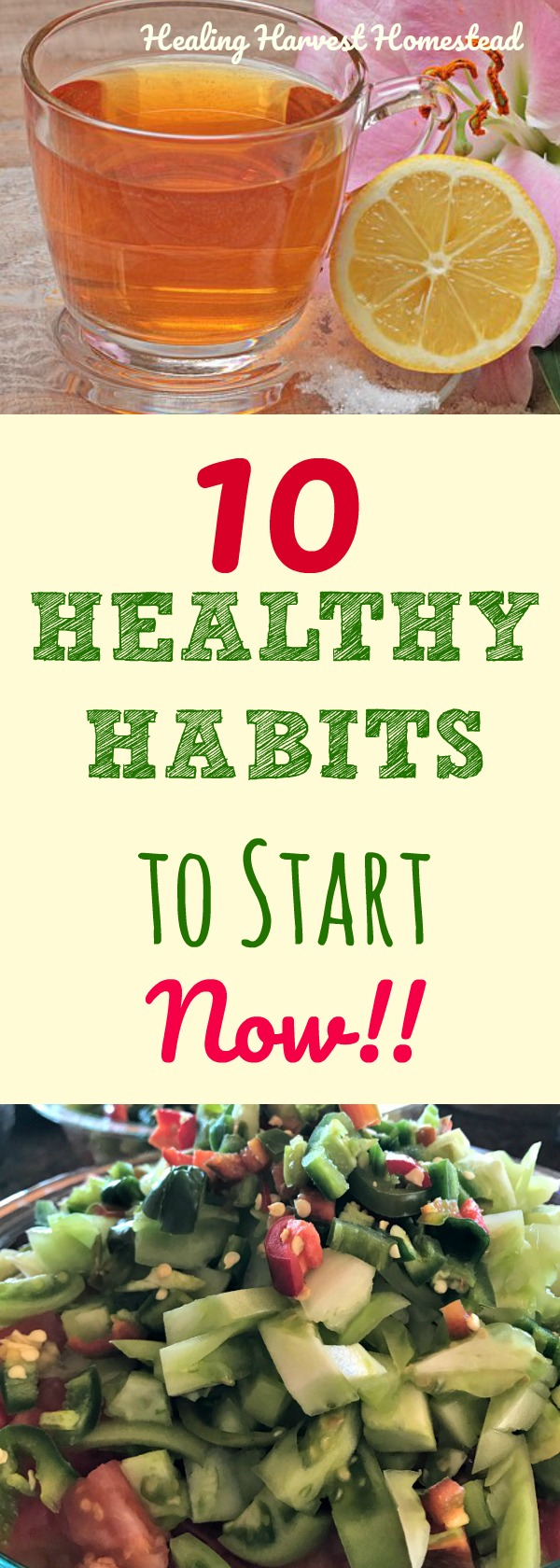 It may be the New Year and time to set goals and start some different good habits...but these 10 Healthy Habits are habits for your health you should start right NOW, no matter what time of the year it is! Get your body, mind, and soul healthy by starting these 10 things right now! New habits are great---as long as they add to your life and health! #healthyhabits #habits #newyear #health #healthy gethealthy #eat #healingharvesthomestead #habits