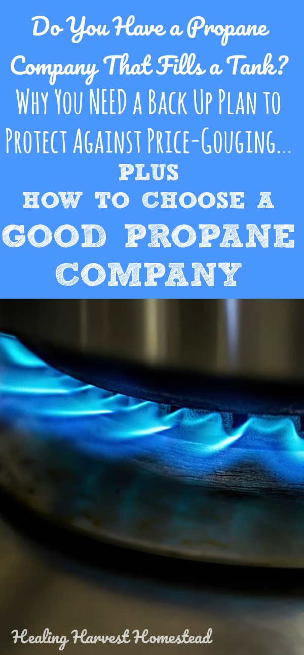 How to choose a propane company. And why you'd better have a back up plan for your energy needs. Ever been price-gouged? Ever been powerless? Here's some food for thought to help prevent yourself from being in the terrible situation we find ourselves in with our (now) old propane company.  PLUS criteria you should look at in choosing a good propane (or any kind of) company.