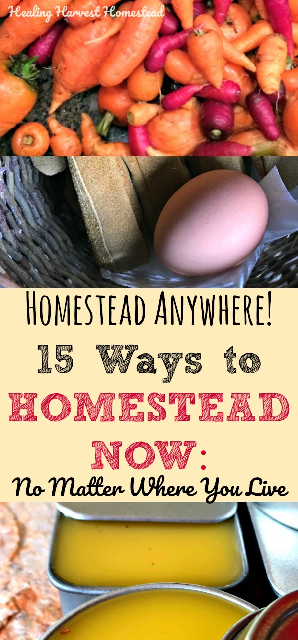 Did you know you can homestead anywhere? Yep! You CAN! Even in a city, you can be a homesteader. Here are some things you can start doing right now! Find out how to start your homestead no matter where you live! #homestead #homesteadskills #preparedness #prepper #howtostart #healingharvesthomestead