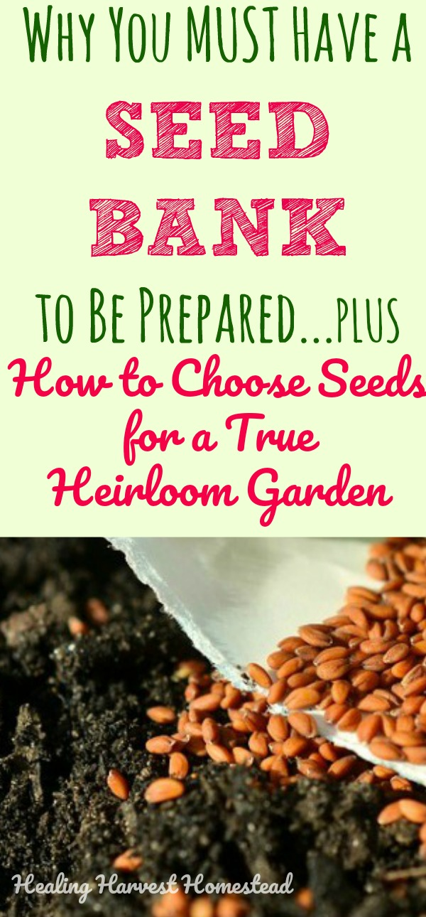 Find out how to create a true heirloom garden: What kind of seeds should you buy? What is an heirloom seed? Why are GMO, hybrid and non-open pollinated seeds bad to buy? What are the best seed for seed storage? Where can you find a good  seed bank for long-term seed storage ? All your basic seed questions answered!
