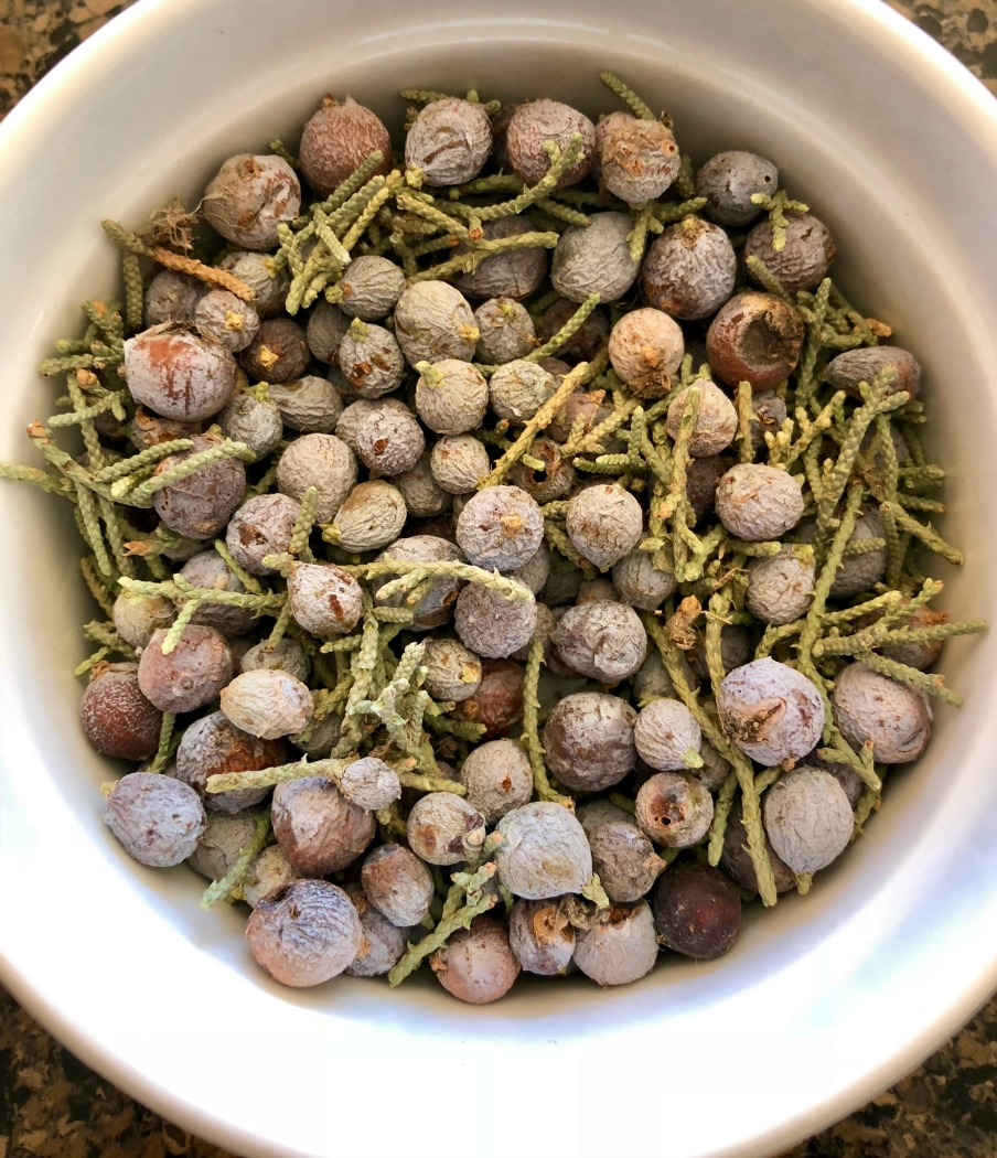Here are some juniper berries I picked about a month ago. These are dried and ready to go! You can use them fresh, as well. They do not contain a high level of moisture.