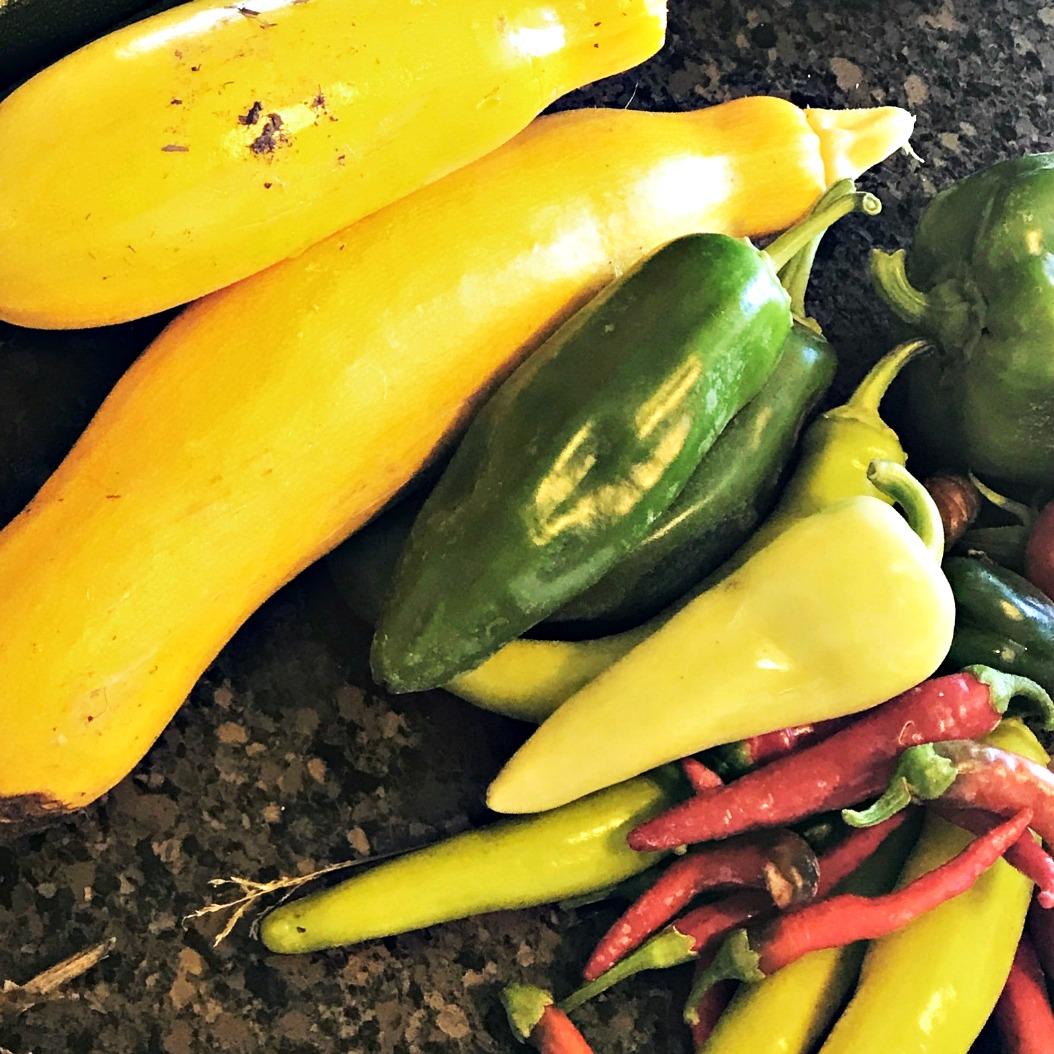 Here are some late Fall vegetables from our garden---