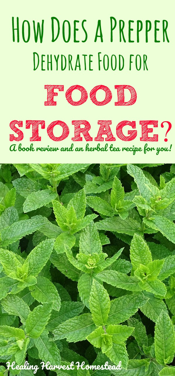 Food dehydration is one of the best ways to prepare food for long term food storage. Find out practical ways to dehydrate your foods, along with a book review and an herbal tea recipe just for you! :-) You'll love this book:  Prepper's Dehydrator Handbook !