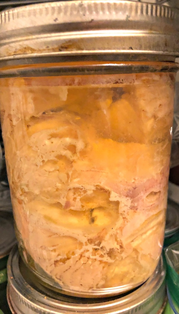 Canned meat is GREAT to have stored up. My mom canned this fresh salmon from the Umpqua River two years ago---It's still good.