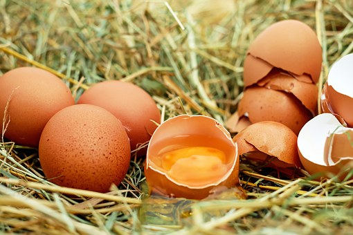 Whether or not you choose to eat raw eggs is obviously up to you. I hope this article helped you make that decision!