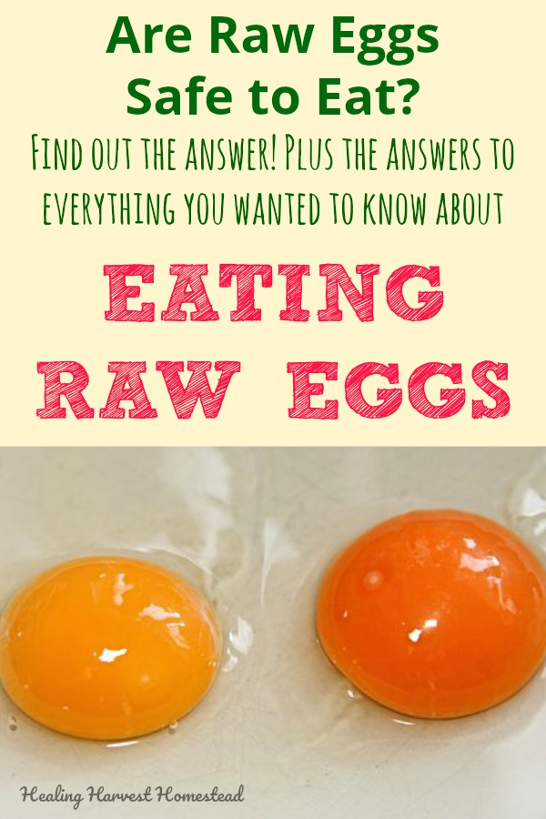"""Mr. V. wants a raw egg in his daily smoothie—-""""But is this safe?"""" I asked him—-So I did some research before deciding to plop that raw egg into his drink. Here are your answers if you are wondering if eating raw eggs is safe, do they really have salmonella, and how to handle a raw egg so it's safe to eat! #rawegg #eatingrawegg #howtouseraweggs #cookwithrawegg #raweggrecipe"""