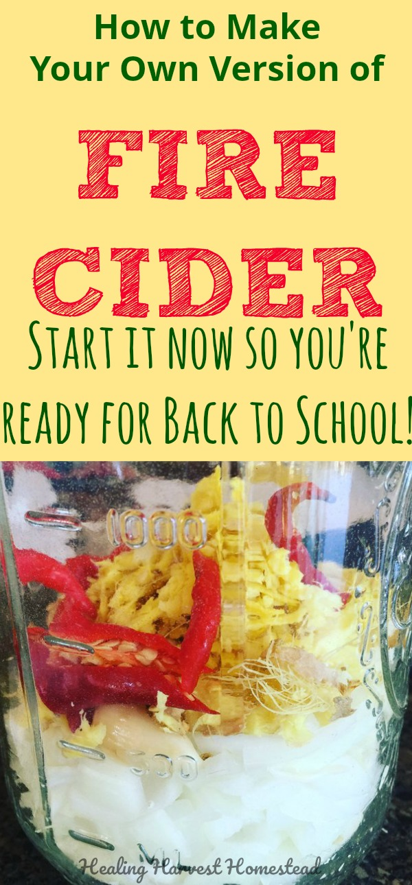 Here is my recipe for Fire Cider, a traditional herbal tonic made famous by Rosemary Gladstar. Variations of this immunity boosting recipe have been around for hundreds of years! Find out what it is, why you should make it, and clear directions and pictures for making your very own. Also, find out how to use Fire Cider! #firecider #firetonic #dragontonic #healing #herbal #infusedvinegar #health