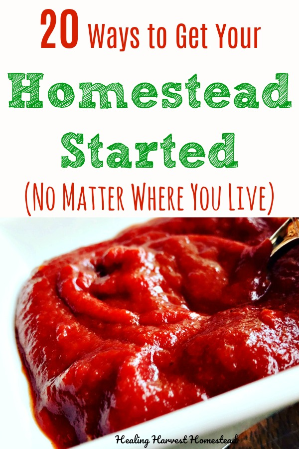 Do you want to start a homestead, but you think you can't because you're living in an apartment, a home in the suburbs, or just don't think you can? Well, here are 20 ways and considerations to think about when getting your homestead going. You can homestead anywhere, and I'll tell you how to start! #homestead #start #homesteading #selfsufficiency #selfreliance