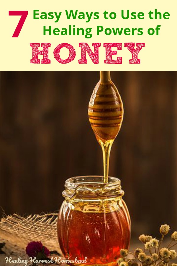 Raw honey is useful in so many natural remedies and home medicines you can easily make your self. Get ready for the back-to-school illnesses by boosting your immune system (and your child's) and having some home cures using honey on your idea list! #honey #homeremedy #remedy #cure #naturalcure #naturalremedy #honeyasmedicine #herbalism #herbal #backtoschool #coldfluseason #cold #flu #healing #healingharvesthomestead #health #getridof