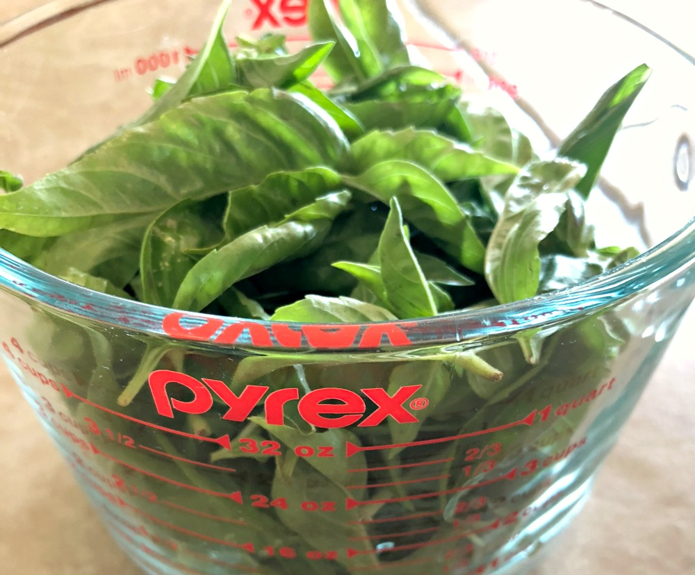 Gorgeous fresh basil from the garden---