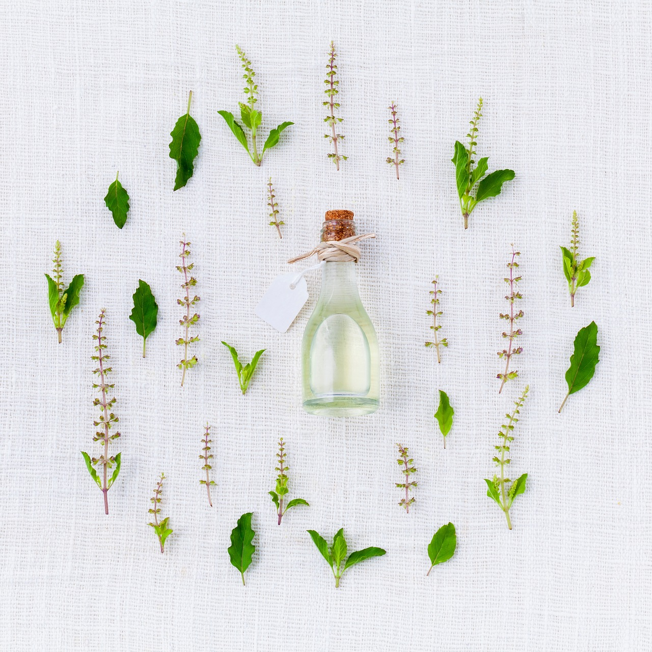 Herbs vs. Essential Oils? Which are better?