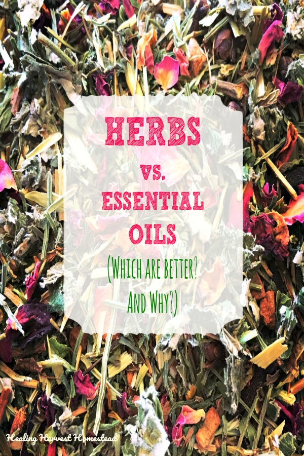 """Have you ever wondered if essential oils are """"better"""" than herbs? Or if using herbs is """"better"""" than using essential oils? Have you wondered which are safer? Easiest on the earth? Here are the benefits and downsides of both herbs and essential oils. You need to know these facts if you are planning to start purchasing herbs or essential oils. #herbbenefits #essentialoilbenefits #benefits #downsides #negatives #pros #cons #essentialoils #herbs #herbalism #naturalhealth #alternativehealth"""