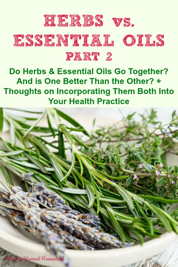 Are herbs better than essential oils? Or are essential oils best? Or...should they be used together? Find out how aromatherapy is actually part of herbalism + how you can incorporate essential oils into your herbal practice and vice versa. Which should you rely on? #healingharvesthomestead #essentialoils #herbs #herbal #herbalism #aromatherapy #plantmedicine #homehealth #health #healthyfamily