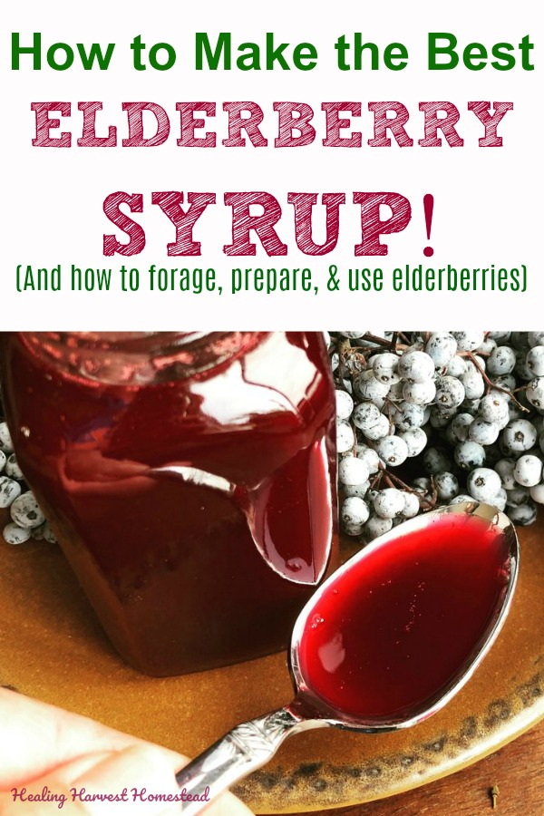 Have you made your elderberry syrup yet this year? Get it ready now, so you have this excellent remedy for colds and flus in your kitchen pharmacy! Trust me: It's best to be prepared for the flu and cold season! Find out how to forage, prepare elderberries safely, and make the MOST delicious and effective elderberry syrup. #elderberry #syrup #pancakes #flu #remedy #cold #herb #herbalism #using #herbs #herbal #natural #effective #easy #healing #harvest #homestead