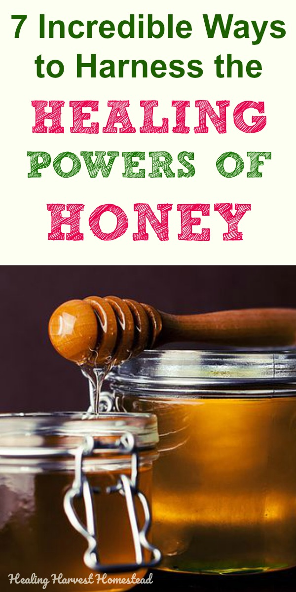 There's not much else in nature as versatile and healing as honey. Find out how to use honey to help keep you well, heal faster from bad colds and flu, and even help skin issues. Here are seven powerful ways honey can heal you. These remedy recipes I share are incredible and all you need to do is know how to use your raw honey. #natural #remedy #honey #healing #heal #cold #flu #getridof #health #wellness #honeyforskin #healingharvesthomestead #naturalremedy #immunesystem #homeremedies #recipe