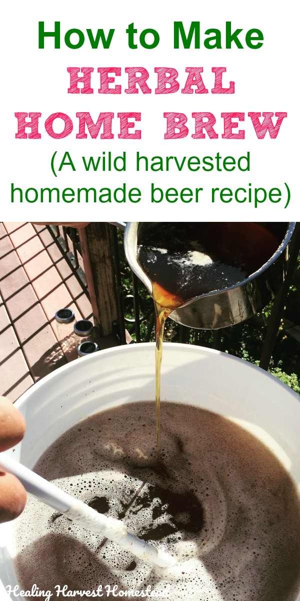 Here is a wildcrafted herbal homemade beer recipe you can make at home! Ideas for using natural herbs from your area to create a home brew you can enjoy. Great idea for the prepper or survivalist too. Make your own herbal beer from foraged herbs. Delicious! #howtomake #beer #ale #homebrew #homemadebeer #herbal #herbalbeer #homemadeale #foraged #brewing #athome #mancave #healingharvesthomestead