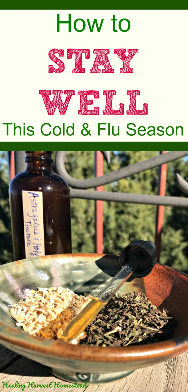 Cold & flu season is upon us! For the next four or five months, illnesses will be rampant in our world with the cold weather, holiday stress, and lowered immune systems. Here are simple, easy, natural ways to stay well this Fall! It is possible to prevent a cold or flu from starting by taking action while you feel great! #healingharvesthomestead #wellness #health #cold #flu #getridof #immune #boostimmune #howto #staywell #notgetsick #homeremedy #natural #symptoms #boost