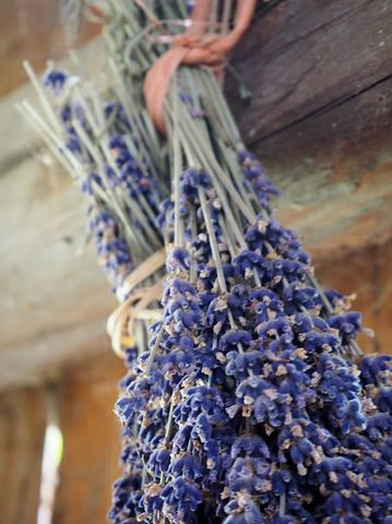 Simply hanging your herbs to dry is a great way to dry them quickly and enjoy how they look at the same time!