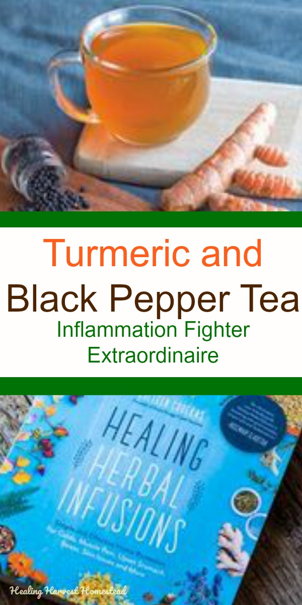Find out how to make turmeric & black pepper tea to help your body fight chronic inflammation. This tea is so easy to make, and best of all, it works! If you want to reduce the inflammation in your body, this is a daily tip to start doing now. #inflammation #getridof #herbaltea #healingharvesthomestead