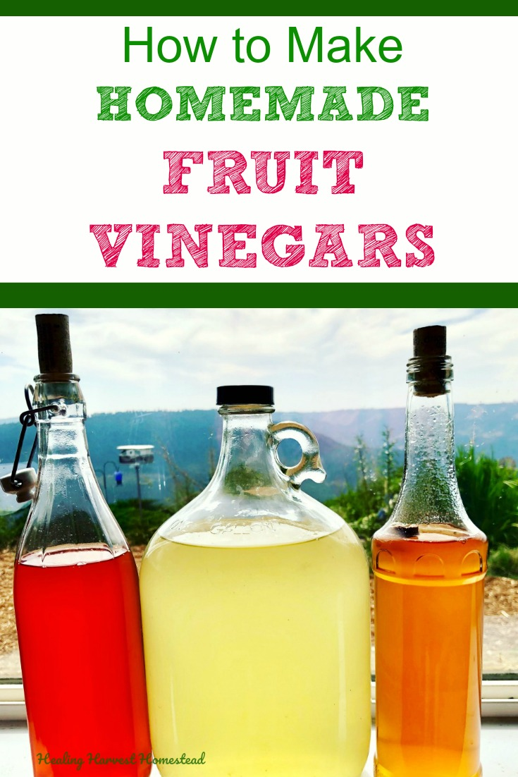 Did you know you can make your own natural homemade vinegar made from all kinds of fruit? We all know how good raw apple cider vinegar (ACV) is for us, and you can make it yourself! AND you can also make raw grape, plum, pear, or all kinds of fruit vinegars in the same way. These make great diy gifts in cute bottles this holiday season! #fruitvinegar #howtomake #diygift #homemade #healingharvesthomestead