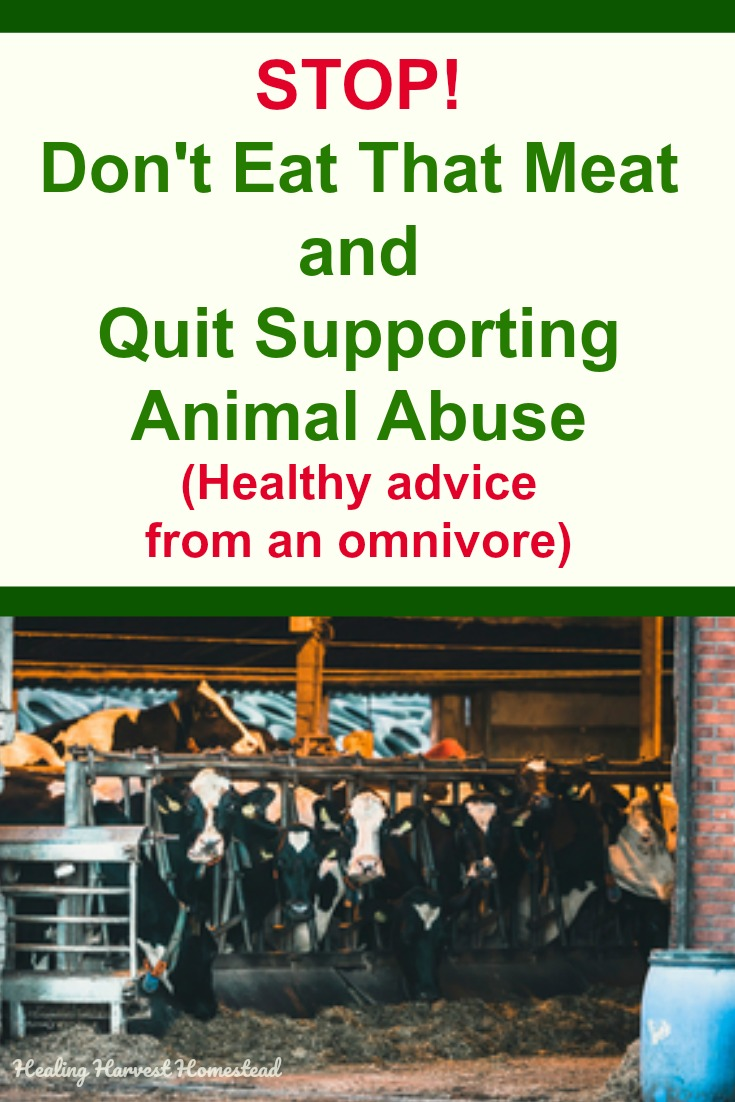 Meat from factory farms comes from animals that are abused. The meat is shockingly unhealthy due to what they are fed, as well as their treatment. STOP eating the MEAT! Here are ways you can find healthy meat that is good for you. Clean meat is the way to go, but you have to have an open mind and know where to find it. #cleanmeat #healthy #meat #healingharvesthomestead