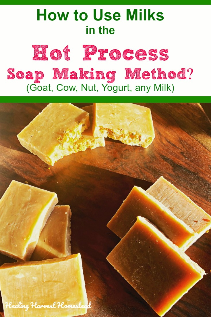 As a soap maker who almost exclusively uses the hot process method these days, I often get asked if you can make soap using milks this way? The answer is YES, but you have to know a few things first. Here's how you can make hot process handmade soap using all kinds of milks. #howtomake #hotprocesssoap #milksoap #withmilk #healingharvesthomestead