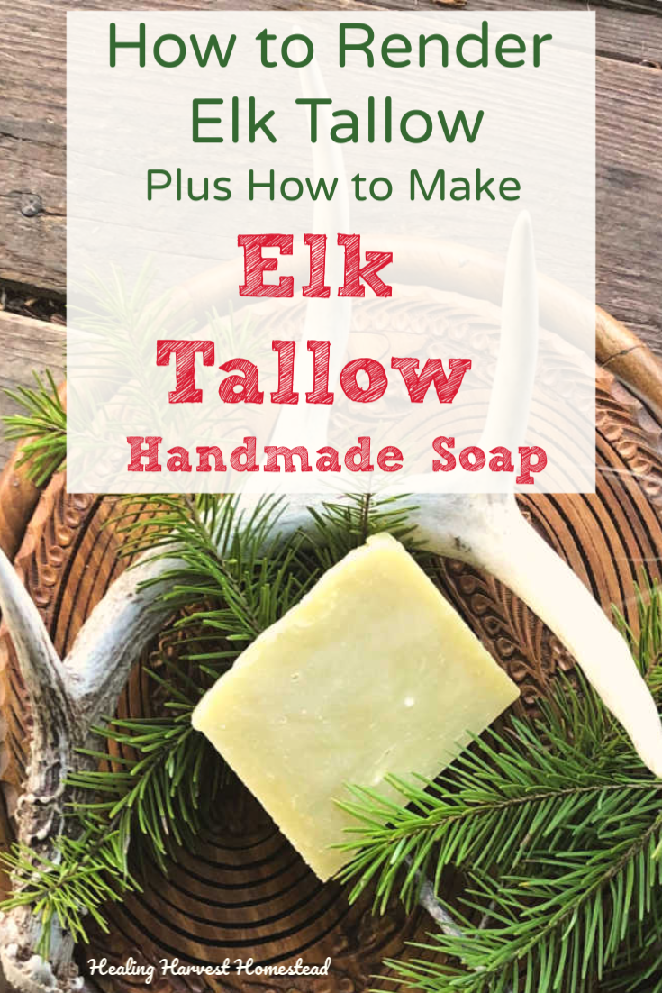 You'll learn how to render fat (tallow or lard) using two different methods, plus how I accidentally figured it out! AND here is a great recipe for how to make homemade natural elk tallow soap. The directions are for the hot process method, so there is no cure time! Handmade soaps are the best! #elk #tallow #lard #render #howto #make #handmade #soap #fat #hotprocess #healingharvesthomestead