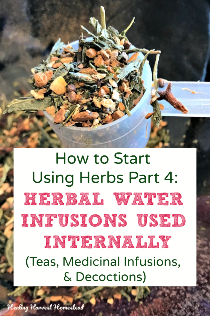 How to start using herbs: This part 4 of the series will teach you about herbal water infusions used internally. These are teas, medicinal infusions, and decoctions. Find out what they are, how to make them, and when to use them. #howtouse #herbs #infusions #waterinfusions #tea #herbal #decoction #medicinal #infusion #healingharvesthomestead