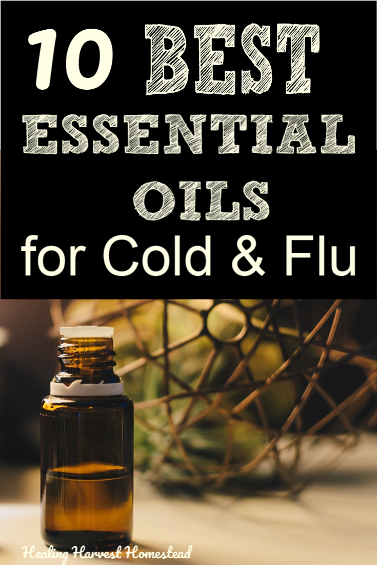 These are the BEST essential oils you can use to get rid of the cold and flu symptoms like congestion, headache, body ache, lymph movement, cough, and more, naturally! Which oils should you buy for a natural way to beat cold and flu? Find out here by clicking through to the article! #cold #flu #getridof #natural #essentialoils #remedy #easy #fast #healingharvesthomestead